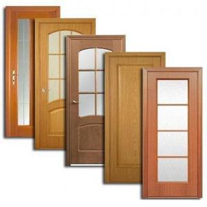 Двери, дверные блоки Идрицы