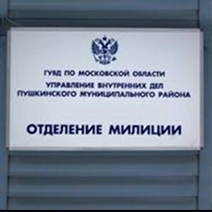 Отделения полиции Идрицы